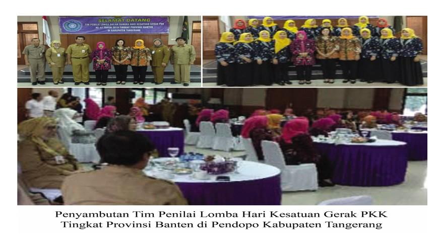 Program IVA Tes Bagian Penilaian Lomba HKG PKK Banten | Web Terpadu
